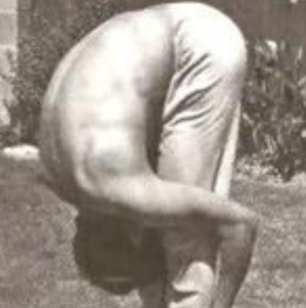 Bruce lee prostrating